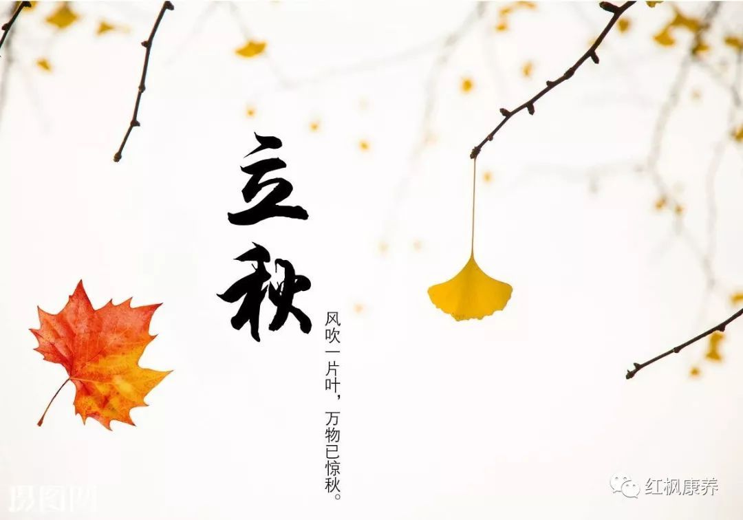 立秋,是农历二十四节气中的第13个节气,更是秋天的第一个节气,标志着