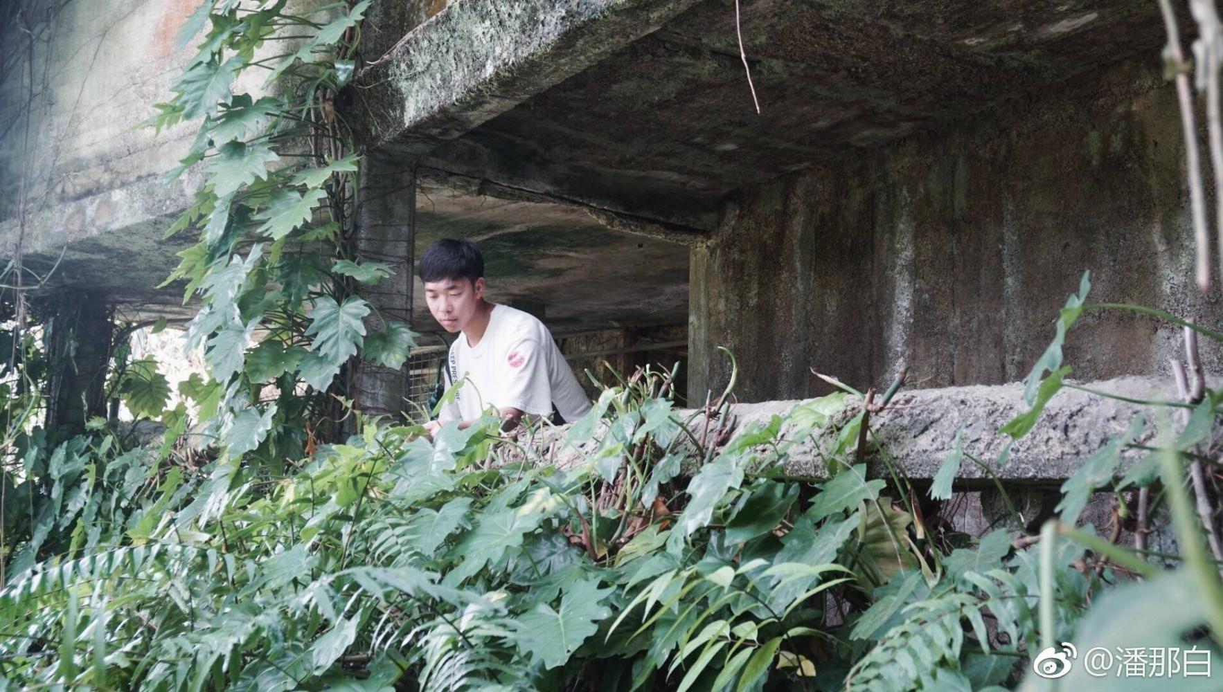 传说宫崎骏天空之城灵感地丨实用攻略,教你两小时畅玩帕罗尼拉公园