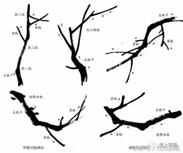 梅花出枝可概括为以下几种方法,掌握基基本出枝形态及对应的墨稿画法图片