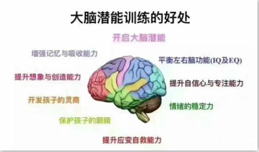 全脑教育和传统教育的区别所在