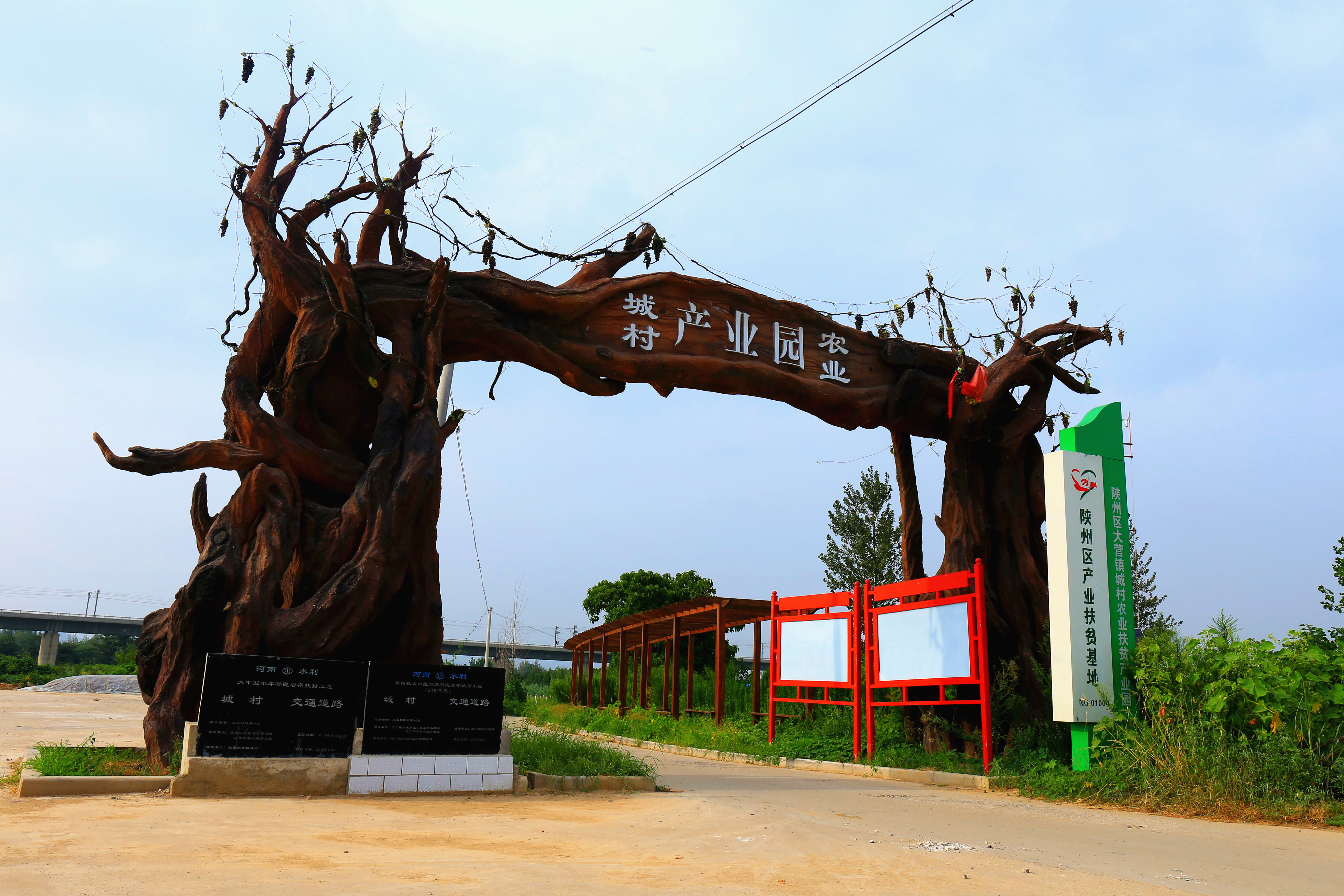 陝州區大營鎮城村第二屆葡萄展銷...