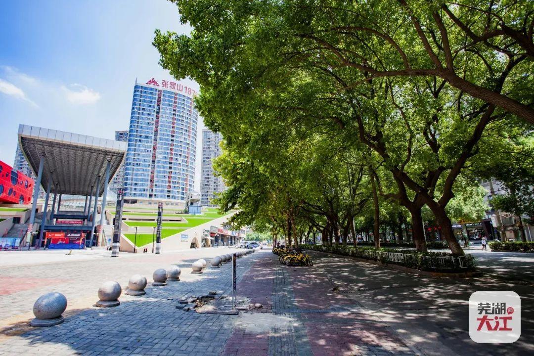 芜湖市区两大主干道将改造,城南新建两座立交!