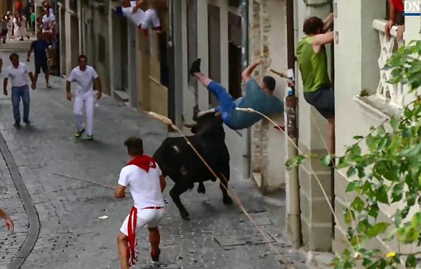 西班牙一公牛街上狂奔 疯狂攻击一无辜男子