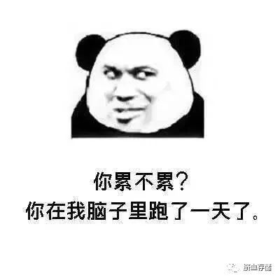 《每日一笑》土味情话熊猫表情包,表白可以用表情包了图片