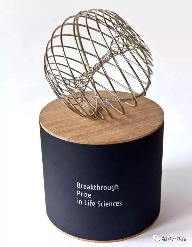 谁说寒门无贵子?两个数学大神拿下科学大奖,成就一个传奇,震撼世界!