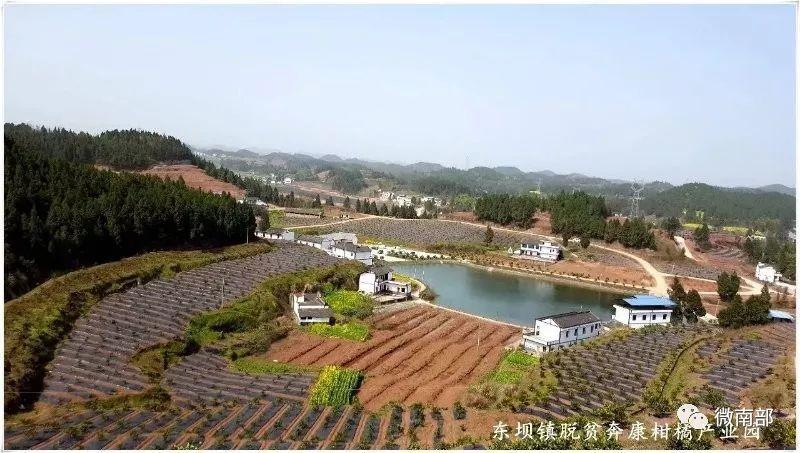 荣经县三合乡有多少人口_白城三合乡地图