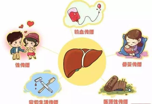 人感染乙肝病毒的过程是什么?乙肝传播途径有哪些?