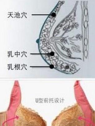 汁穴娘_乳房上有一宝穴,它是女性的抗癌穴,长寿穴,快乐穴,有时间就灸一灸!