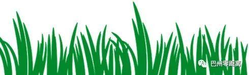 【聚焦总目标 打好三大攻坚战】巴州:力争到2020年有效遏制全州农业面源污染