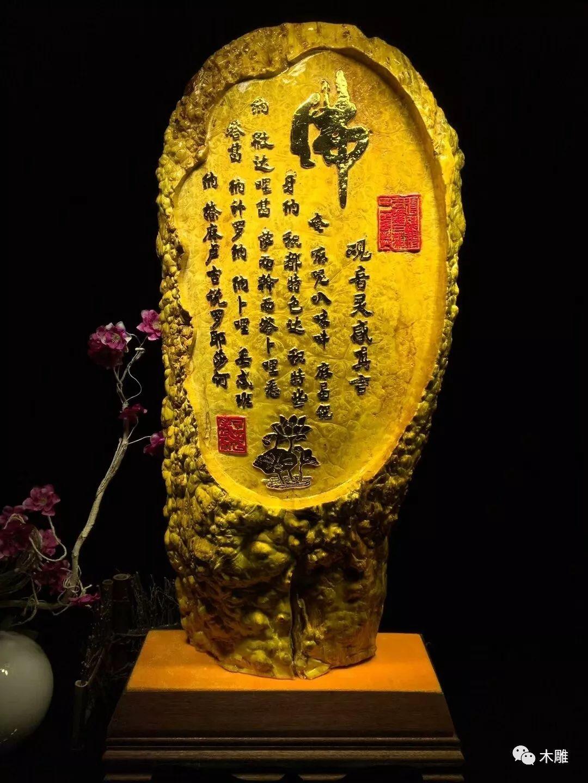 被称为招财木的黄金樟,金光璀璨惊艳时光!
