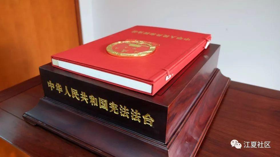 """【青苹】陶玉:弘扬""""宪法精神""""齐心共筑""""中国梦"""""""
