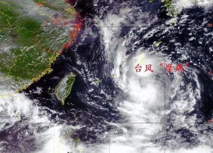 今早6点,台风最新消息!