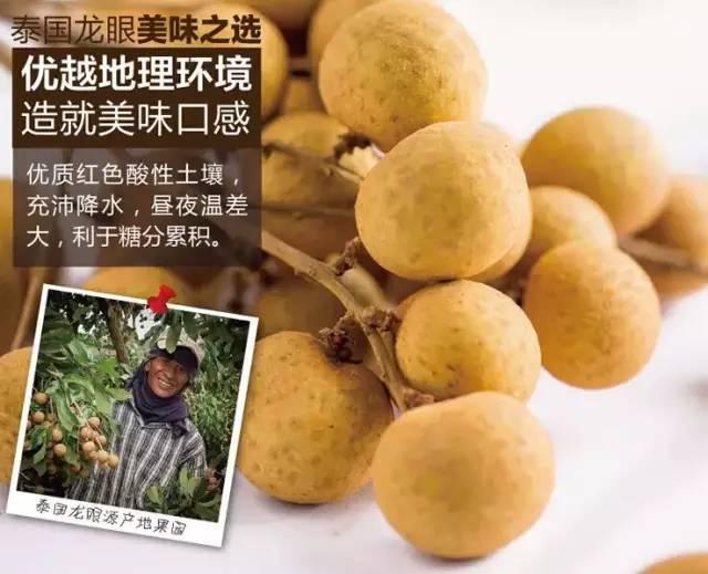 【盛弘城-欧宜精品超市】泰国龙眼新鲜到货~邀您试吃