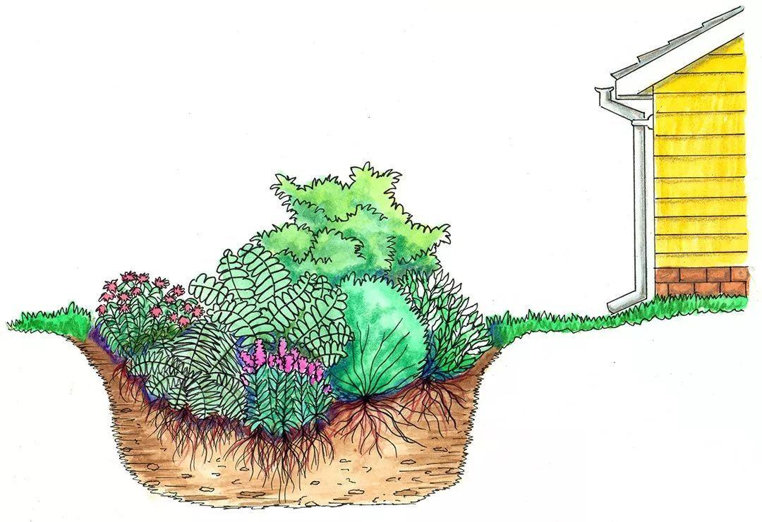 是以生态滞留池为主要表现形式的较小尺度的绿地景观但是随着雨水花园图片
