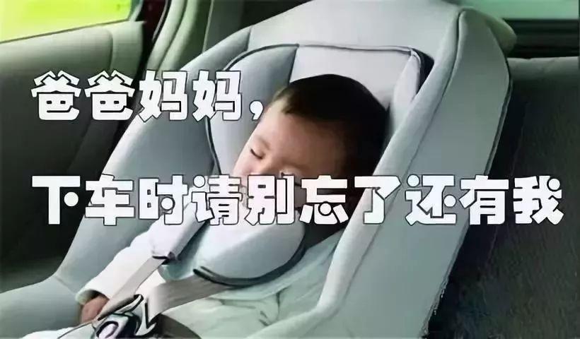 「暑期安全」车里有你遗忘的……