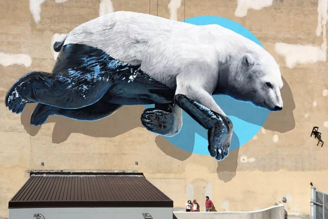 那些天天画画的设计师,为北极熊做了?蝴蝶黄瓜摆盘的做法图片