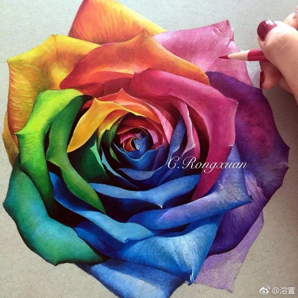 绘画教程 | 彩铅手绘 画一朵七彩玫瑰花过七夕,零基础