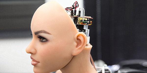 生命科学 | 米国人想用性机器人降低离婚率?细思极恐