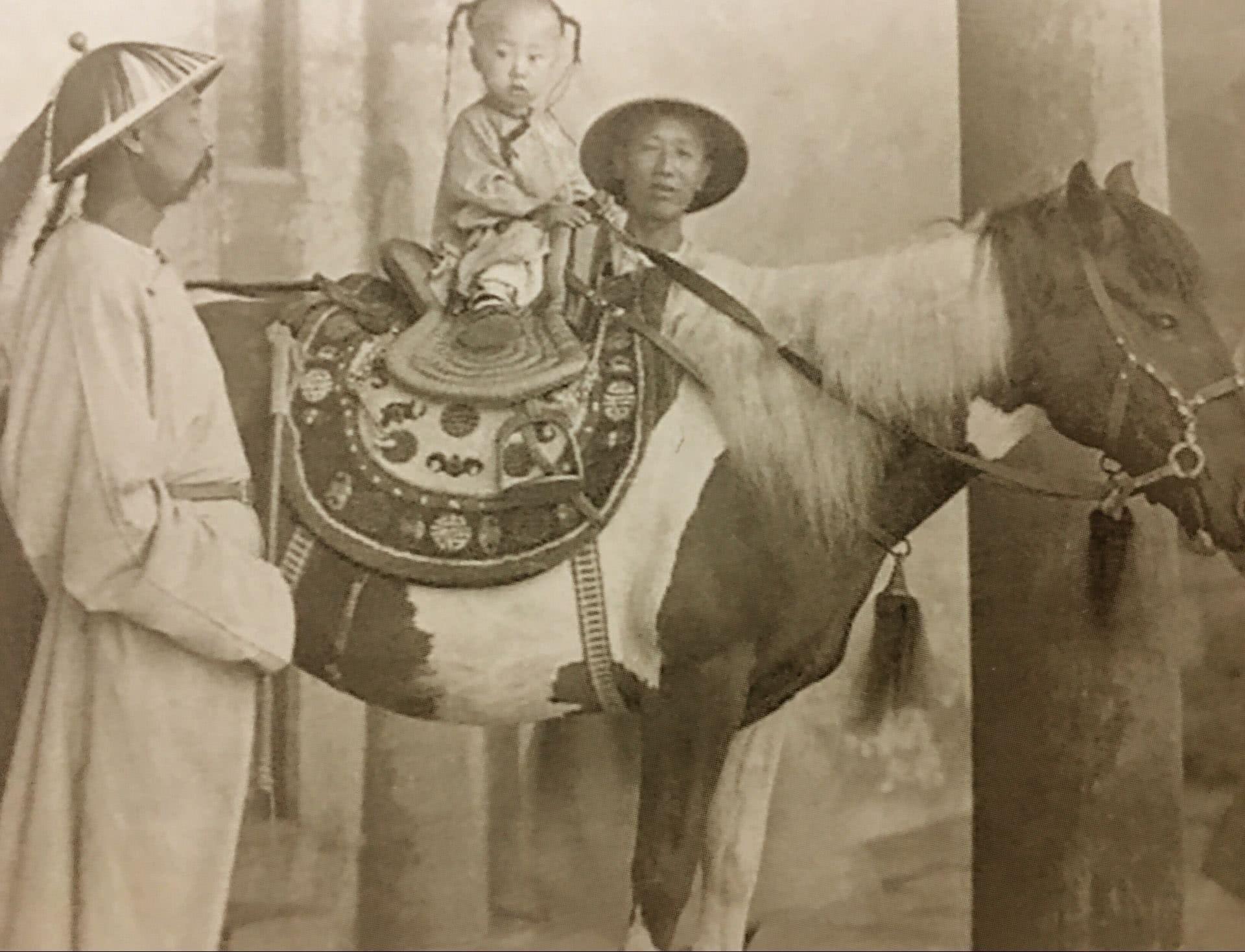 Image result for æo¥ä»a马