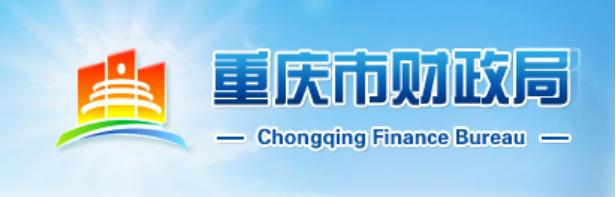 爱数AnyBackup助力重庆市财政局灾备建设