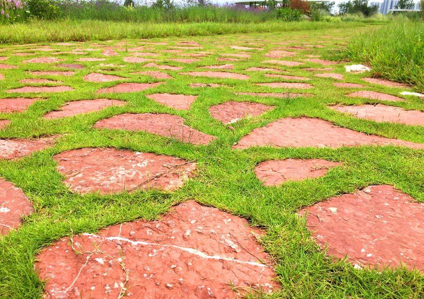 南宁园博园:红砂岩当嵌草砖 变废为宝又美观 (图2)