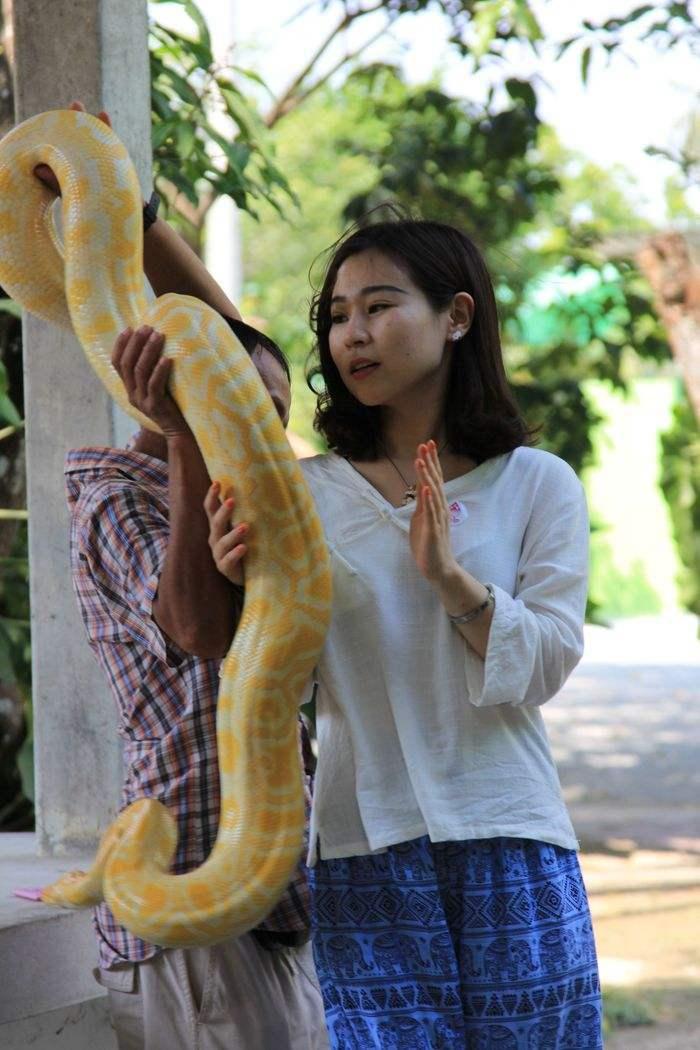泰国女导游谈游客素质,日本第一韩国最差,中国游客排第几吗?