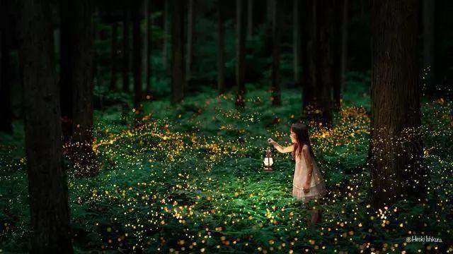 做一只照亮他人的萤火虫(续)