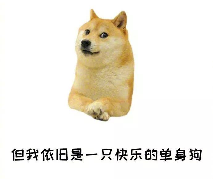 没有狗粮只有公告,临沂市直29人教招拟聘用人员公示名单发布!