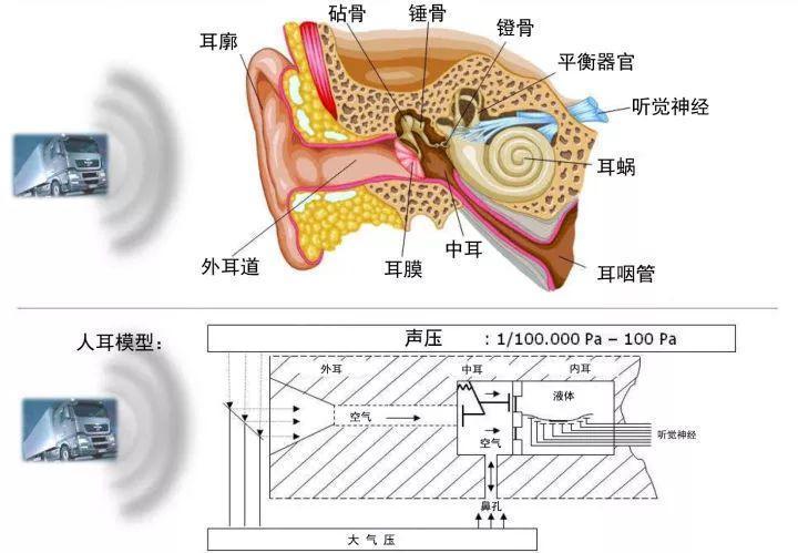 莱芜配汽车钥匙专家今天科普个高端知识:汽车声学了解一下(图9)