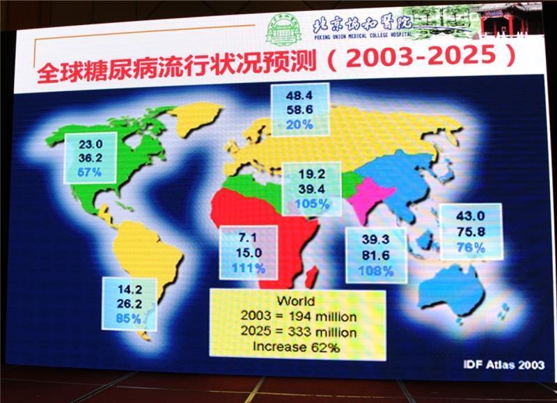 """""""肠道激素与糖尿病营养""""研讨会在武汉成功举办(组图)"""