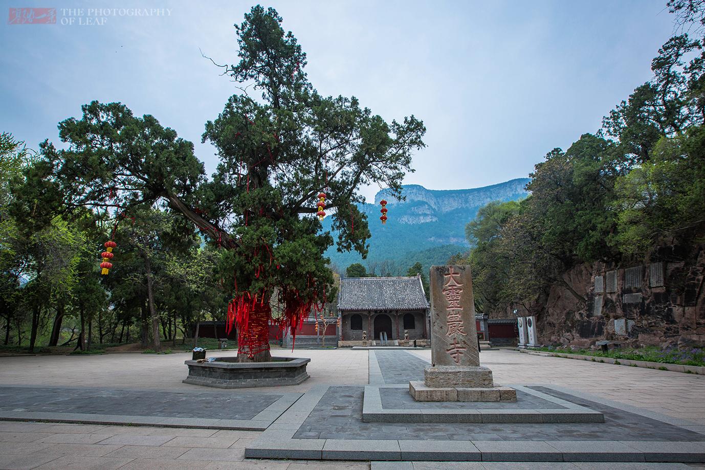 山东灵岩寺40尊彩塑像,被称为天下一绝,一尊铁胎塑像成未解之谜