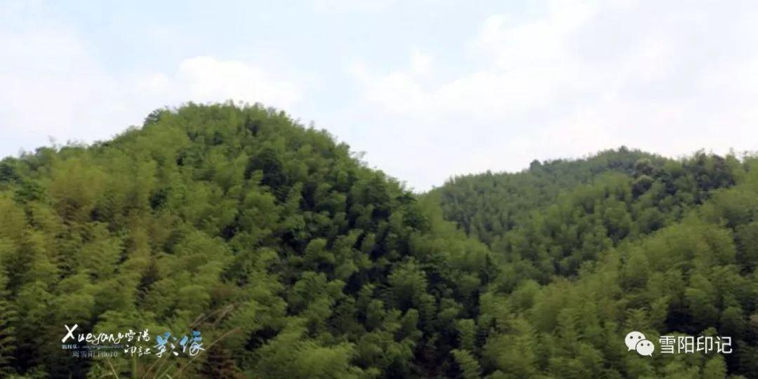 紫荆山,位于花石镇与茶恩寺镇、白石乡、中路铺镇交界处,距湘潭市区70余公里,海拔383米,山周20余公里,从山麓至峰顶约15公里。它冈峦起伏,气势雄伟,西南、东北、东面分别与天马山、晓霞山、莲花寨相连接,是县境名山之一。山顶有5座峰,围环屹立,中间形成平地,人称五马奔槽。平地上,建有古寺帝兴庵,建筑面积约500平方米,砖木青瓦结构,粉饰精致。清光绪《湘潭县志山水》载:上有紫荆山寺和紫荆禅林。紫荆禅林中神祇人鬼佛像均有之,并备庵田32亩(后陆续增至170亩)。庵南北二墙都立山门,有西墙相连,内