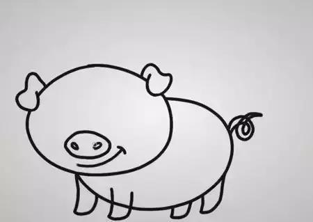 简笔画 可爱的小猪