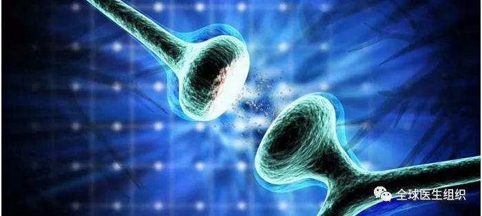 |必读|科学家找到部分阿兹海默症患者无痴呆症状的原因