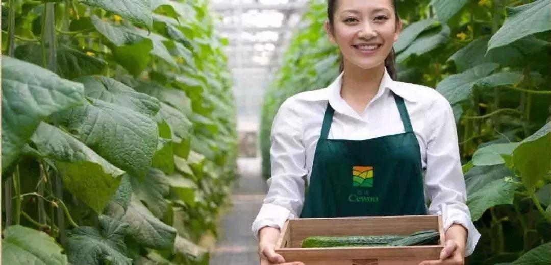 有机农业未来趋势|田园综合体-陕西康大体育设施