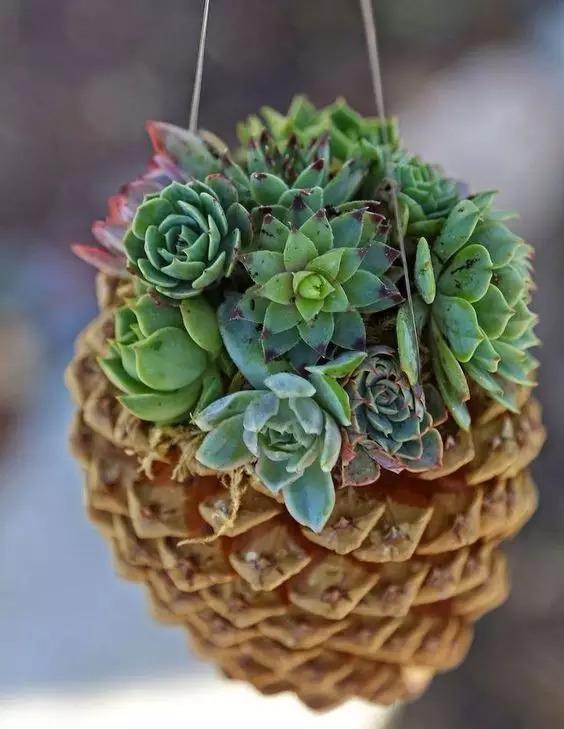 这个简单的折纸手工制作diy松果,做法并不复杂,形象逼真,材料简单,作