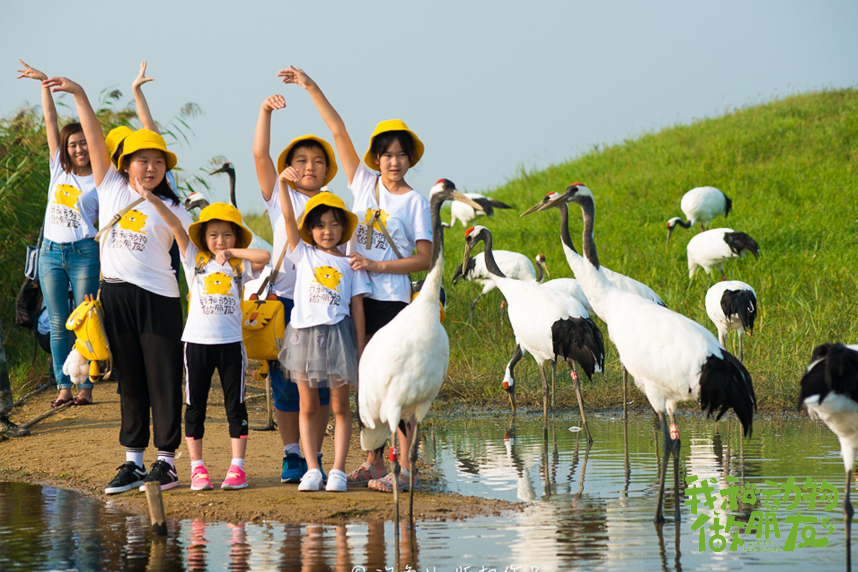 """有一种凉爽叫""""黑龙江的夏天"""",带孩子来和动物做朋友"""