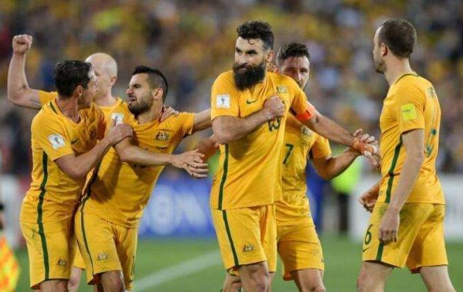 澳大利亚下月开启备战亚洲杯计划 热身将战韩国