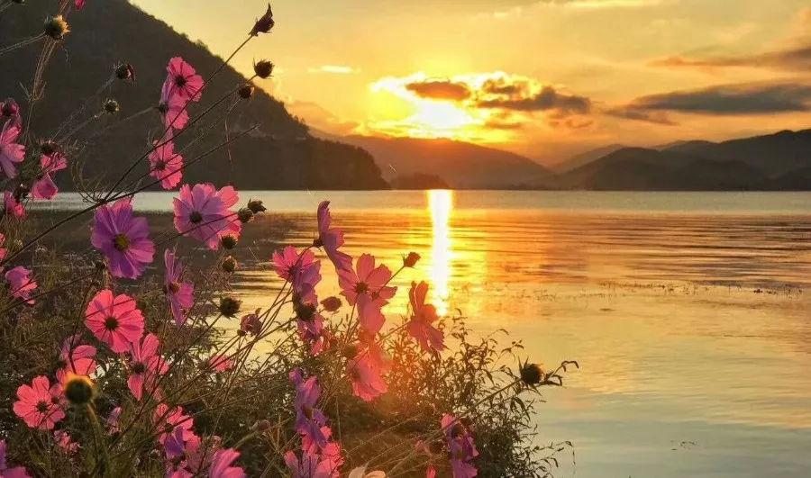 泸沽湖的 美