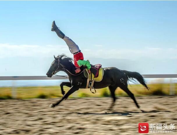 【云游新疆】睹汗血宝马 看万马奔腾 新疆马产业策马扬鞭正当时