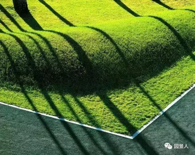 感言微地形堆坡的艺术室内设计景观图片
