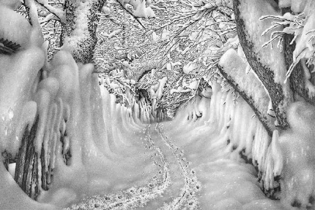 """74岁老人,用一支铅笔画了64年雪,连普京都闹""""笑话了""""!"""
