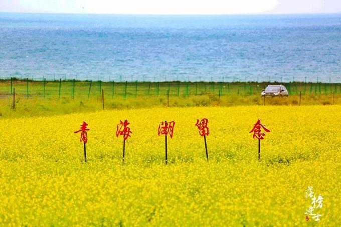 骑共享单车环游青海湖是一种怎样的体验?