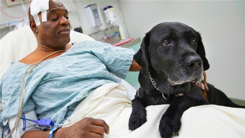 给个网址人与动物的_10个人与动物最感人的时刻,第几个会让你潸然泪下?