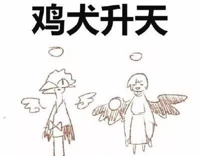 成语鸡什么听_成语故事图片
