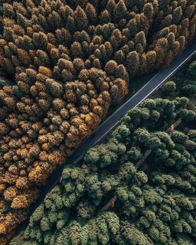9月、10月最佳旅行地丨这些地方藏着秋天最美的景色!