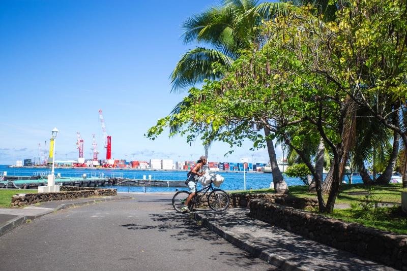 《月亮与六便士》中的塔希提岛,当地经济85%由中国人创造