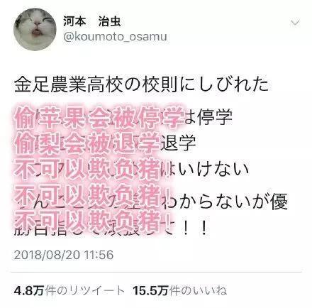 花泽香菜 恋爱循环甲子园燃烧芳华应援棒球的女士姐更让人热血欢腾!