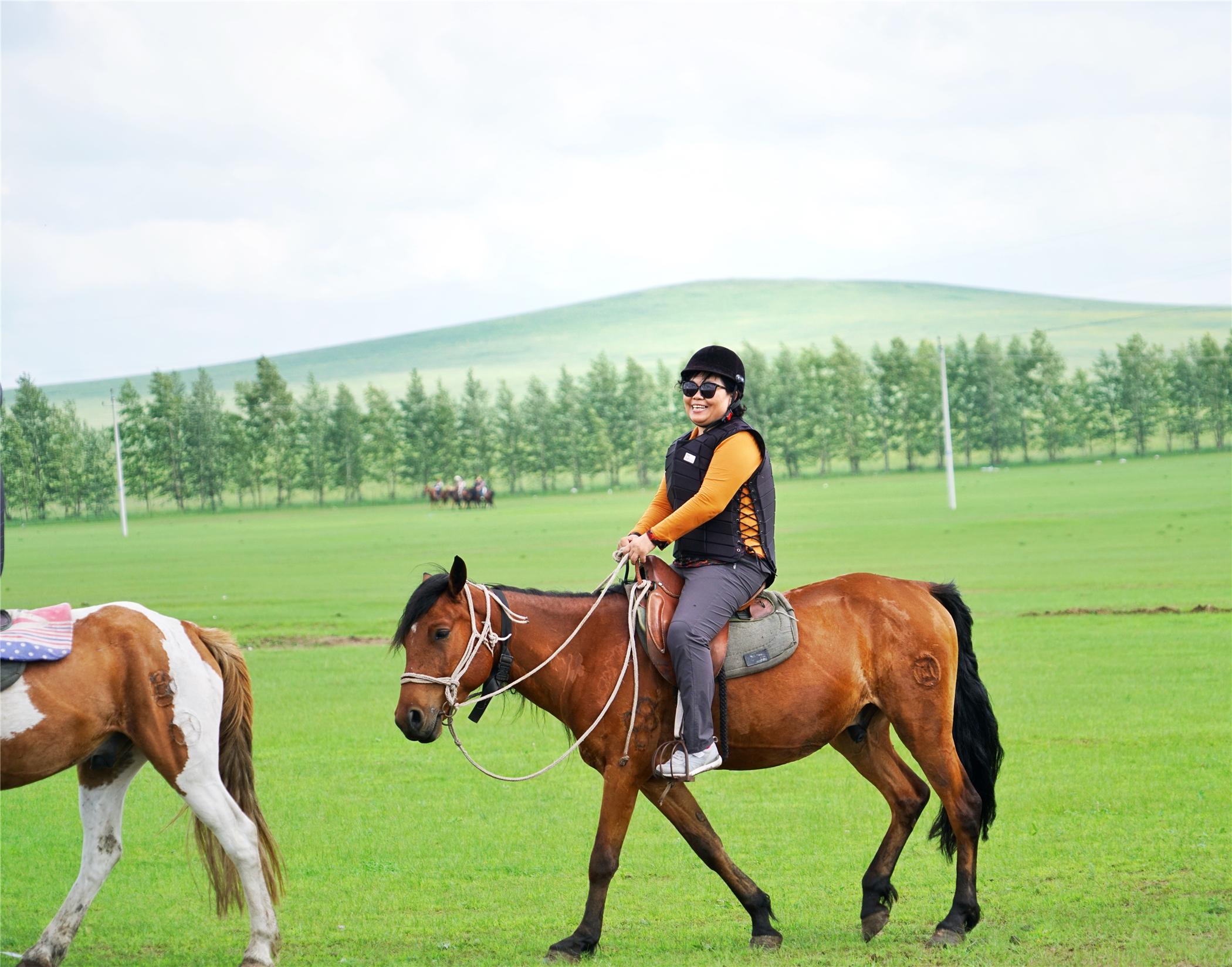策马奔腾呼伦贝尔草原,这就是旅行该有的样子