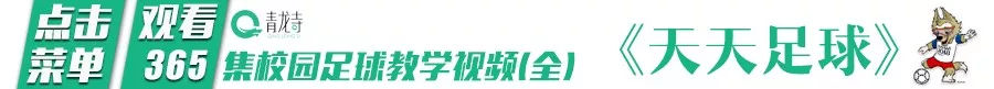 脱离文化教育的技术培训耽误了几代中国足球人